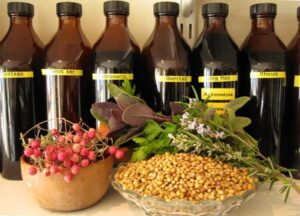 The Western Use of Herbs